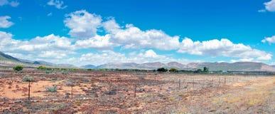 Panorama Karoo krajobraz w Południowa Afryka Zdjęcie Royalty Free