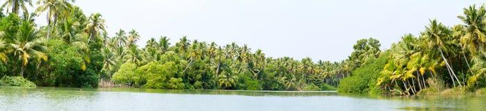 Panorama Kerala stojące wody dżungla, łańcuch laguny i jeziora, Fotografia Royalty Free