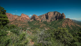 Panorama of Kolobs Canyons with Trees in the Foreground in Zion National Park, Utah on a Clear Day Stock Photos