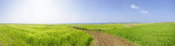 Panorama krajobraz Gapado wyspa Obrazy Royalty Free