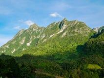 Panorama krajobraz Zielony natura krajobraz asfaltowa droga Zdjęcie Stock