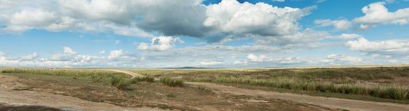 panorama Krajobrazowa droga w stepie Chmura pławik przez niebo zdjęcia royalty free