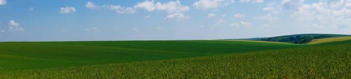 Panorama krajobrazu pola piękny widok zdjęcie royalty free