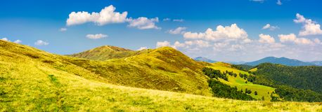 Panorama of Krasna mountain ridge. Beautiful landscape with grassy slopes and forested hill under the blue summer sky with fluffy clouds. location Carpathian Stock Photos