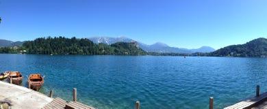 Panorama Krwawiąca jezioro, Slovenia Fotografia Royalty Free