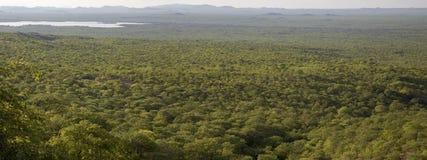 Panorama Kunene krajobraz z lasem, granica między Ang Fotografia Stock