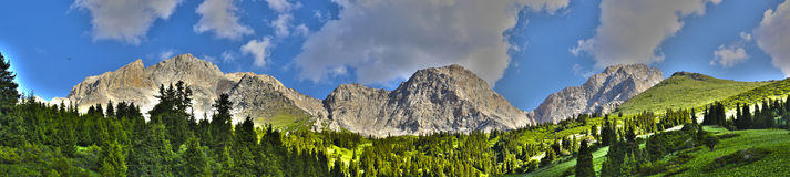 Panorama of kyrgyz mountains Royalty Free Stock Photo