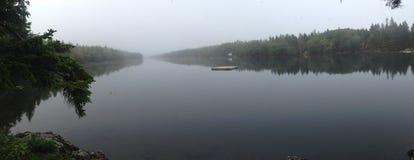Panorama- långt damm Royaltyfri Fotografi