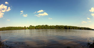 Panorama a la naturaleza Foto de archivo libre de regalías