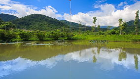 Panorama of lake with artificial flower in tropical park stock footage