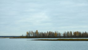 Panorama of lake with autumn trees. In the background in St. Petersburg stock video footage