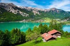 Panorama of lake Brienz royalty free stock photo