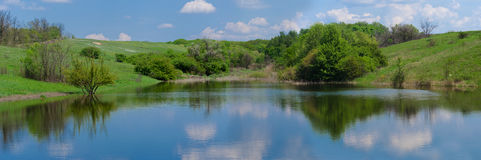 Panorama of the lake. Among green meadow in spring stock photos
