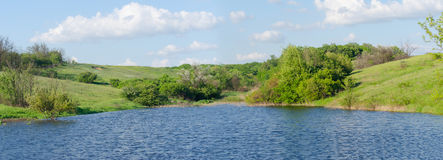 Panorama of the lake. Among green meadow in spring royalty free stock photos