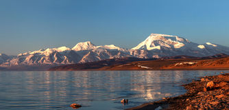 Panorama of Lake Manasarovar and Gurla Mandhata Peak, Western Ti Royalty Free Stock Photos