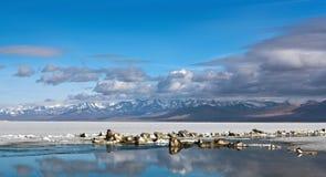 Panorama of Lake Manasarovar, Tibet Royalty Free Stock Photo