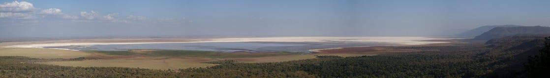 Panorama of Lake Manyara stock image