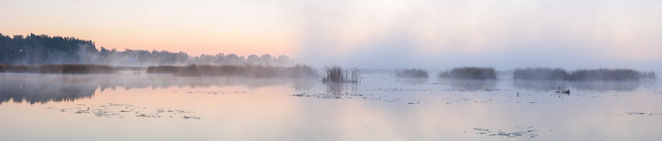 Panorama of the lake in the morning. Royalty Free Stock Photo