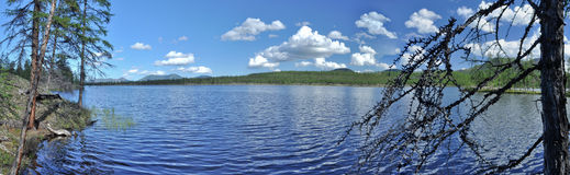 Panorama of lake mountains in the background. Royalty Free Stock Images