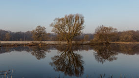 Panorama of the lake in the spring frosty morning. Landscape of the lake in the spring frosty morning. Reflections in the water. Morning silence and tranquility Royalty Free Stock Photos