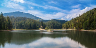 Panorama Lake Synevir summer. Royalty Free Stock Photo