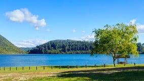 Panorama of Lake Tikitapu, or the Blue Lake, near Rotorua, New Zealand. Lake Tikitapu is one of a group of beautiful lakes in the Bay of Plenty region near stock photo