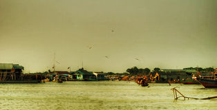 Panorama of lake Tonle Sap Royalty Free Stock Image