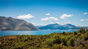 Queenstown View form Lake Wakatipu, New Zealand. Panorama of Lake Wakatipu with the forest in the foreground and the alpine town of Queenstown in the background Stock Photography