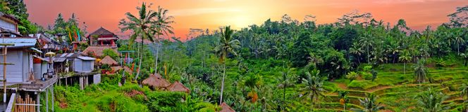 Panorama from a landscape on Bali Indonesia at sunset. Panorama from a landscape on Bali Indonesia with rice fields and houses at sunset Stock Photos