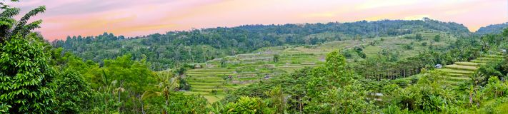 Panorama from a landscape on Bali Indonesia at sunset Royalty Free Stock Image