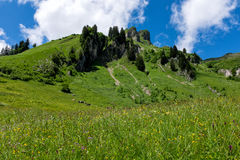 Panorama landscape in Bavaria with alps mountains and meadow at spring. Landscape in Bavaria with alps mountains and meadow at spring Royalty Free Stock Image