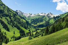 Panorama landscape in Bavaria with alps mountains and meadow at spring. Landscape in Bavaria with alps mountains and meadow at spring Stock Images