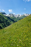 Panorama landscape in Bavaria with alps mountains and meadow at spring. Landscape in Bavaria with alps mountains and meadow at spring Royalty Free Stock Images