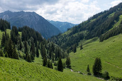 Panorama landscape in Bavaria with alps mountains and meadow at spring. Landscape in Bavaria with alps mountains and meadow at spring Stock Photo