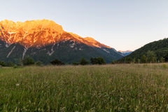 Panorama landscape in Bavaria with alps mountains and meadow at spring Royalty Free Stock Photo