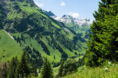 Panorama landscape in Bavaria with alps mountains and meadow at spring Royalty Free Stock Image