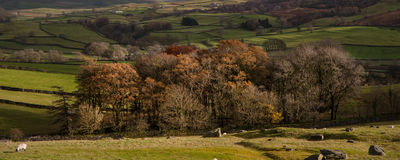Panorama landscape beautiful vibrant Autumnal English countrysid Stock Image