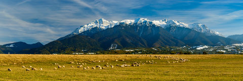 Panorama landscape with bucegi mountains Royalty Free Stock Image