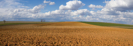 Panorama Landscape with Fallows and Crop. Landscape with fallow land recently plowed and cereal crops. A sunny day with cottony clouds royalty free stock photography