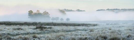 Panorama landscape of foggy Autumn Fall sunrise over frosty fiel Stock Photos