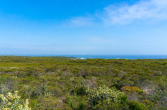 Panorama landscape of green bushland and ocean on the horizon Royalty Free Stock Images