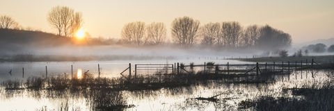 Panorama landscape of lake in mist with sun glow at sunrise Royalty Free Stock Photography