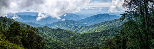 Panorama of landscape mountain view forest of thailand Royalty Free Stock Image
