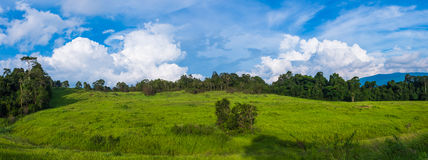 Panorama of landscape at park, field against blue sky and clouds Royalty Free Stock Photography