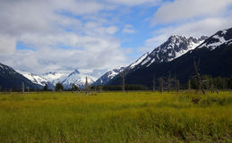 Panorama landscape of snowcapped mountains in Alaska Stock Image