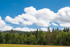 A Panorama landscape view over pine tree and clouds black forest Germany Stock Image