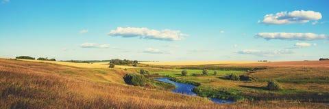Panorama- landskap för solig sommar med guld- vetefält och gröna ängar arkivfoto