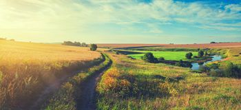 Panorama- landskap för solig sommar med jordlandsvägen som passerar till och med de guld- vetefälten och de gröna ängarna royaltyfri fotografi
