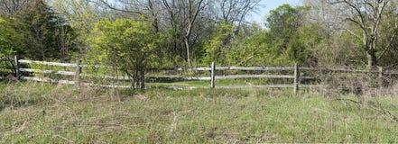 panorama- lantligt lantligt trä för banerstaketpanorama Royaltyfria Bilder