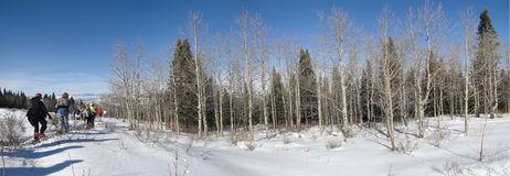 Panorama - Large group of snowshoe hikers Stock Image